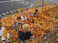 Students in leaf piles
