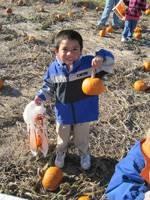 Student holding a small pumpkin